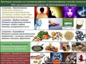 Кушайте для получения энергии
