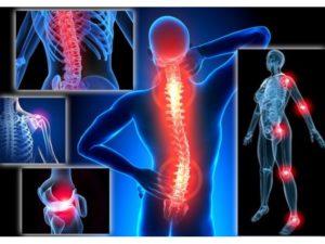 Клинические и патобиомеханические проявления патологии позвоночника и суставов конечностей