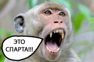 Укус обезьяны