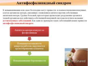 Осложнения II триместра беременности: Антифосфолипидный синдром
