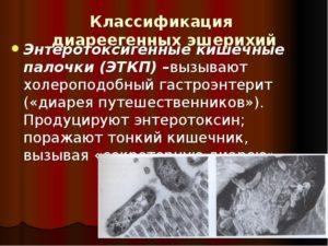 Энтеротоксигенные кишечные палочки (ЭТКП)