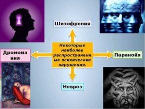 Шизофрения или паранойя?