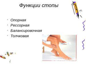 Функции стопы