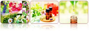 Применение эфирных масел при заболеваниях желудочно-кишечного тракта