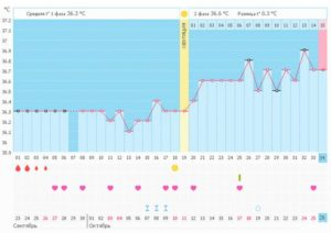 Низкая базальная температура во 2 фазе цикла
