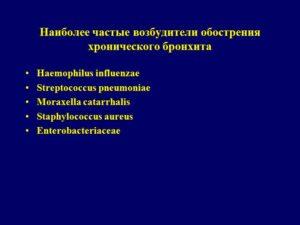 Хронический бронхит,стафилококк