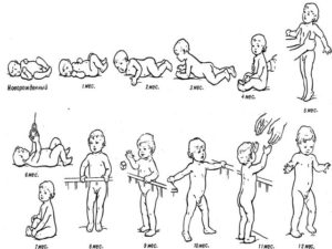 Этапы развития новорожденных: первые 6 месяцев