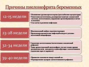 Осложнения беременности в III триместре: Гестационный пиелонефрит