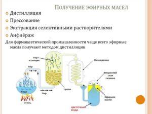 Помощь эфирных масел при высокой температуре