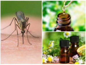 Эфирные масла от комаров