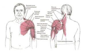 Боли в левой части грудной клетки, плече, онемение левой руки и пальцев