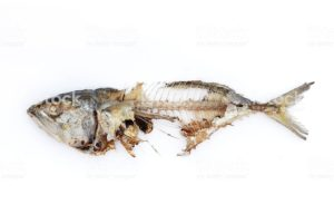 Рыбная косточка.