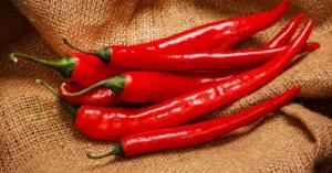 Capsicum Кайеннский или красный перец (Геринг)