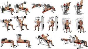 Силовые упражнения: укрепление грудных мышц