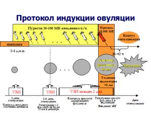Укол диферелина при индукции овуляции