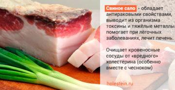 Свиное сало:  полезно, если в меру