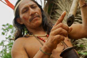 Curare - woorari (Яд, котрым индейцы смазывают стрелы)
