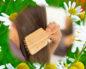 Польза ромашки для волос