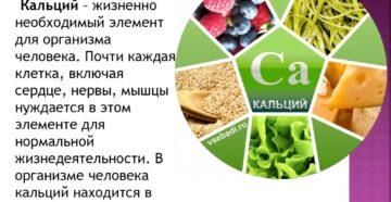 Источники необходимого организму кальция