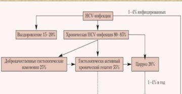 Контролируем течение гепатита С