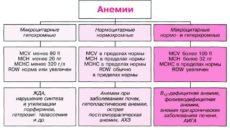 Как определить наличие анемии?